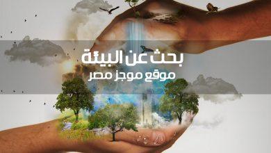 Photo of البيئة أمانة في أعناقنا .. بحث عن البيئة لكل طلاب المرحلة الاعدادية