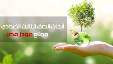 Photo of مقدمة بحث عن البيئة لطلاب المرحلة الاعدادية موضوع بحث البيئه بطريقة سهلة جاهز للطباعة