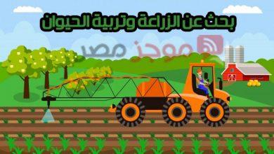 Photo of بحث عن الزراعة وتربية الحيوان للصف الرابع الابتدائي الأزهري 2020