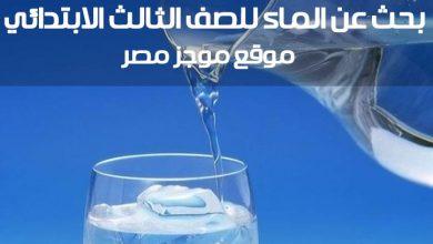 "Photo of بحث عن الماء للصف الثالث الابتدائي عن أهمية الماء للكائنات الحية "" ارفع البحث الان على ادمودو """