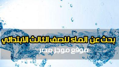 """Photo of بحث كامل عن الماء للصف الثالث الابتدائي """"أهمية الماء للكائنات الحية (الإنسان والنبات والحيوان)"""""""