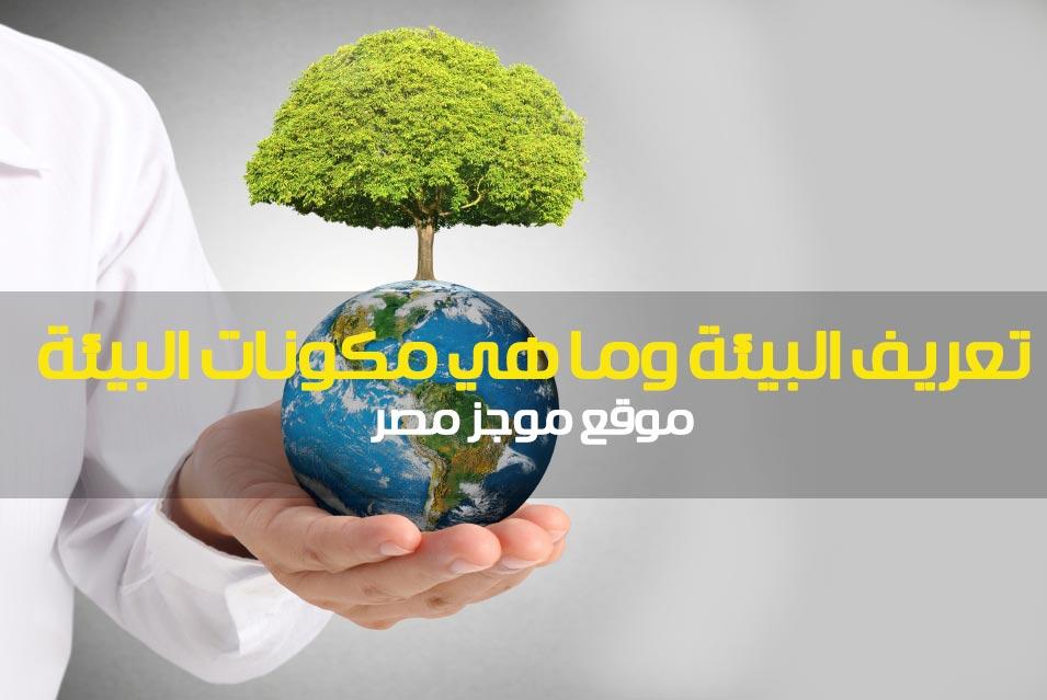 تعريف البيئة وما هي مكونات البيئة