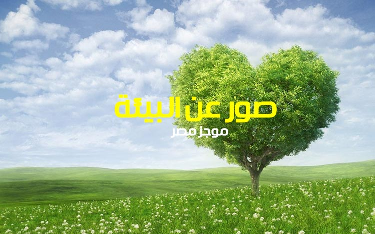 صور عن البيئة