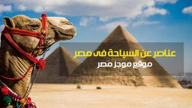 Photo of عناصر عن السياحه لبحث الابتدائية 2020