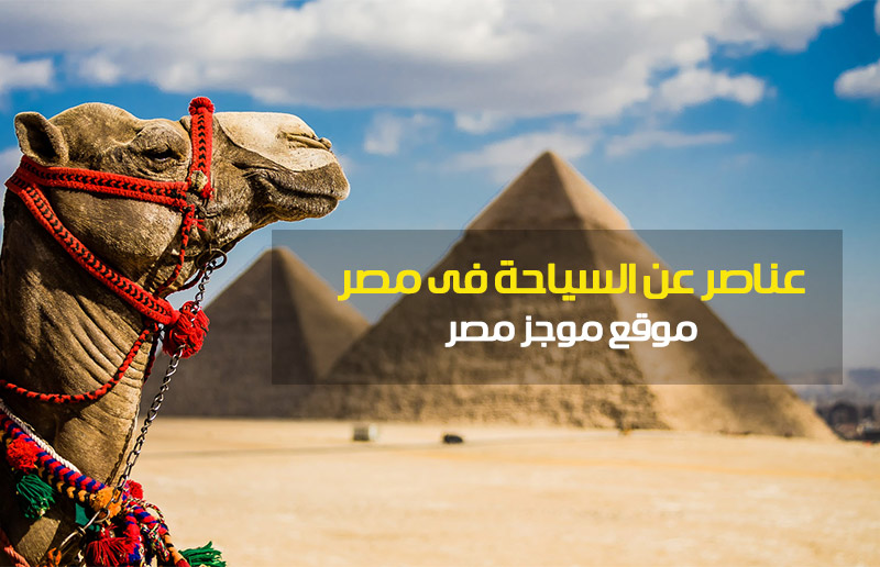 عناصر عن السياحة فى مصر