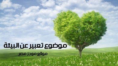 Photo of موضوع تعبير عن البيئة يفيد طلاب الاعدادية فى كتابة البحث
