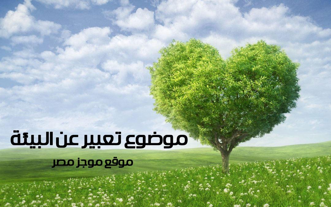 موضوع تعبير عن البيئة يفيد طلاب الاعدادية فى كتابة البحث موجز مصر