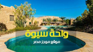 Photo of واحة سيوة من أهم الاماكن السياحية فى مصر