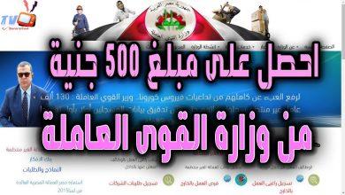 Photo of وزاره القوى العامله منحة الـ500 جنيه شهر يوليو لاستمارة العمالة الغير منتظمة