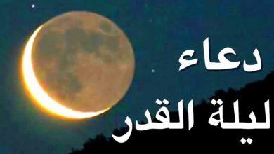 Photo of ادعية ليلة القدر المستجابة .. دعاء ليلة القدر 1441 صيغة الدعاء كاملة