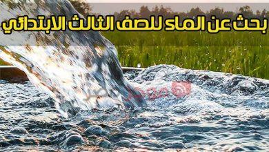 "Photo of ""ارفع البحث"" بحث عن الماء للصف الثالث الابتدائي ""أهمية الماء للكائنات الحية"""
