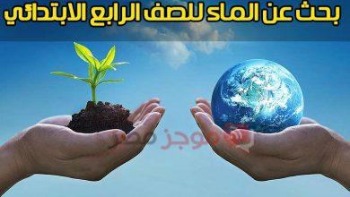 """Photo of """" بنك المعرفة المصري """" بحث عن الماء للصف الرابع الابتدائي + تسليم البحث إلكترونيا"""