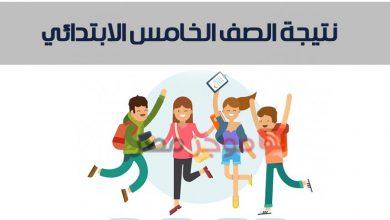 Photo of نتيجة الصف الخامس الابتدائي الترم الثاني 2020 بالاسم رابط موقع مديرية التربية والتعليم بمحافظة القاهرة
