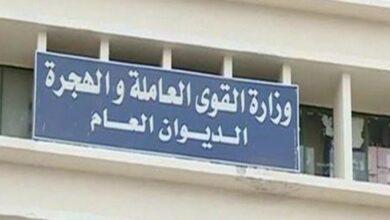 Photo of وزارة القوى العاملة : أجازة 30 يونيو مدفوعة الأجر للعاملين بالقطاع الخاص