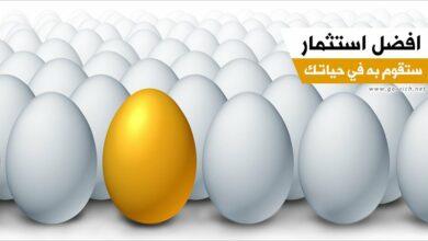 أفضل مجالات الاستثمار في مصر 2020