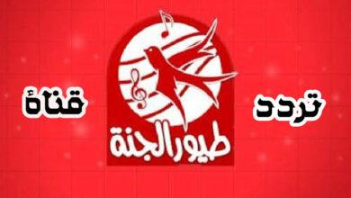 Photo of تردد قناة طيور الجنة الجديد 2020 على النايل سات