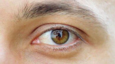 Photo of لون العين عسلي أهم الوان العيون وصفاتها