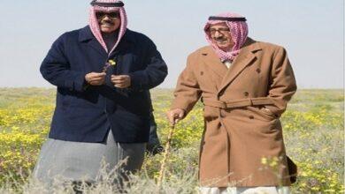 Photo of أكبر محمية طبيعية في الكويت