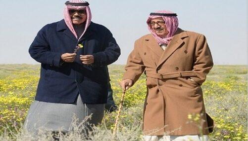 اكبر محمية طبيعية في الكويت