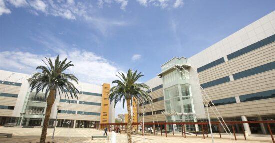 متى تاسست جامعة الامارات