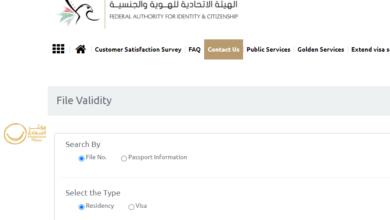 Photo of استعلام عن فيزا دبي برقم الجواز