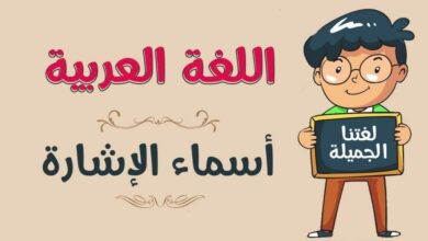 Photo of إعراب الاسم بعد اسم الإشارة وما هو تعريف أسماء الإشارة وأحكام وجودها
