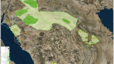 المحميات في المملكة العربية السعودية أكثر من 10 محمية طبيعية جذابة