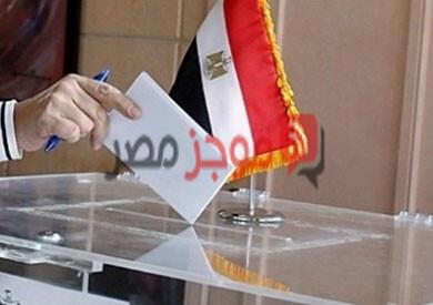 الهيئة الوطنية للإنتخابات .. معرفة اللجنة الانتخابية بالرقم القومي والاسم 2020