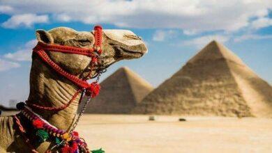 بحث عن السياحة للصف الرابع والخامس والسادس الابتدائى