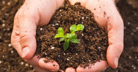 تأثير الإنسان على التربة السلبي والإيجابي وكيف يؤثر الإنسان على التربة؟