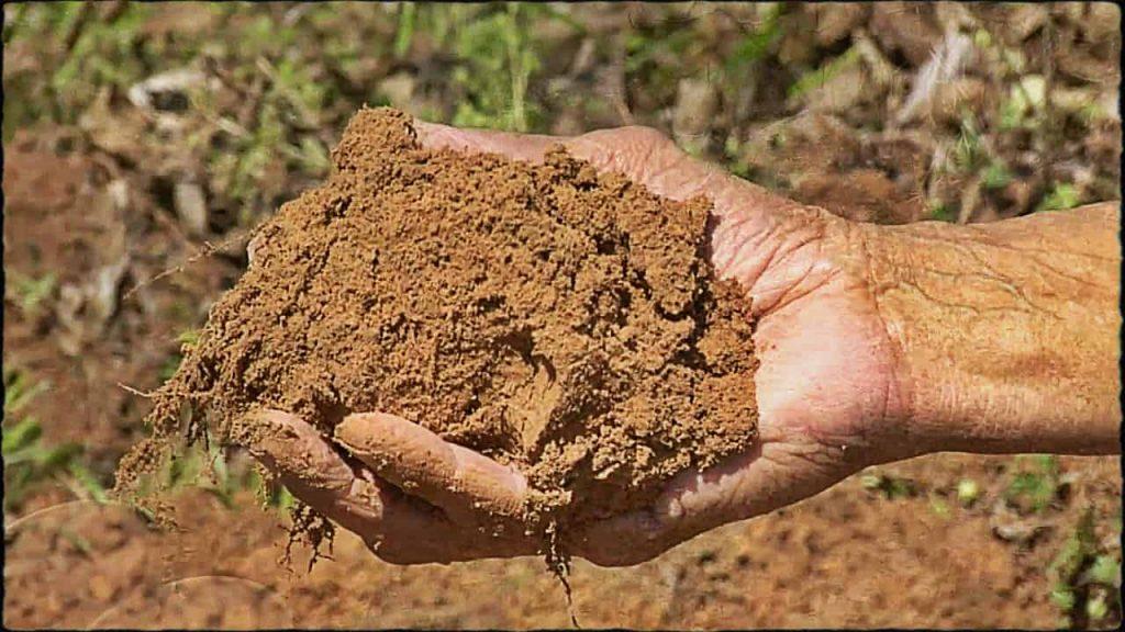 تفسير حلم الطين على القدم وتفسير حلم المشي على الطين في المنام