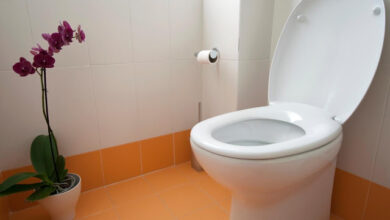 Photo of تفسير حلم دخول الحمام للعزباء وتنظيفه والخروج منه