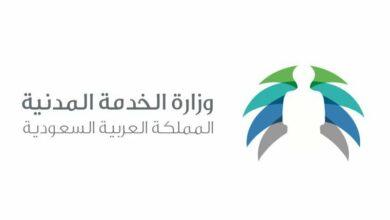 Photo of دورات تدريبية معتمدة من وزارة الخدمة المدنية وخدمات وزارة الشؤون الاجتماعية