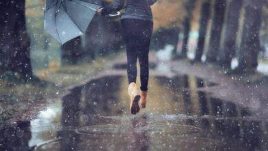 Photo of رؤية المطر في المنام للمهموم لأشهر مفسري الأحلام