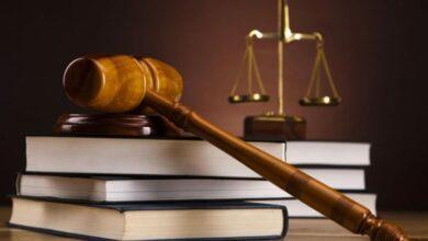 كم سنة دراسة القانون وما هي الفروع الأساسية في قسم القانون