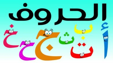 كم عدد حروف اللغة العربية ومراحل تطورها
