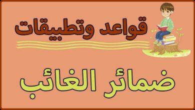 Photo of ما هي ضمائر الغائب وأنواع الضمائر في اللغة العربية