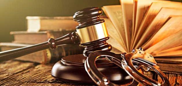 مواد القانون العام وما هي أهميتها وتعريفها