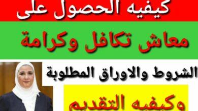Photo of خطوات التقديم معاش تكافل وكرامة 2020 والأوراق المطلوبة للتسجيل الكترونيا