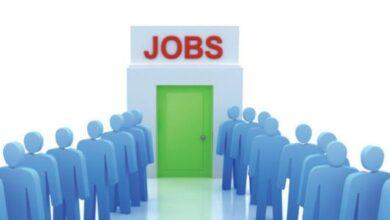 منصة التوظيف الإلكتروني 2030 شروط وكيفية التسجيل في منصة التوظيف