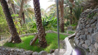 Photo of مصادر المياه في سلطنة عمان