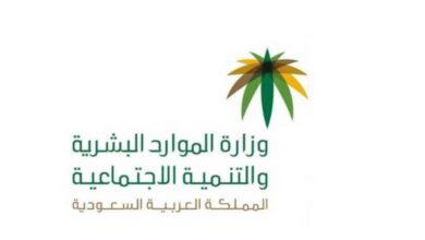 Photo of تعميم وزارة الموارد البشرية رقم 8832