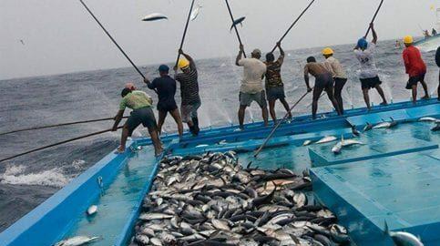 تفسير حلم صيد السمك بالسنارة وباليد للمرأة المتزوجة والعزباء