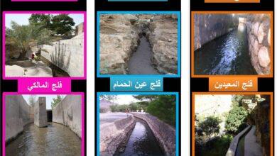 كم عدد الافلاج في عمان