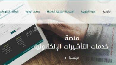 استعلام عن زيارة عائلية برقم الجواز وما هي أنواع التأشيرات في المملكة العربية السعودية