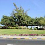 شعار ولاية صحم في سلطنة عمان
