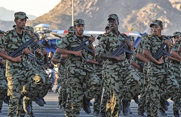 نظام التعليم بالمدارس الثانوية الجوية العسكرية وما هو تنسيق معدل القبول بالمدارس العسكرية