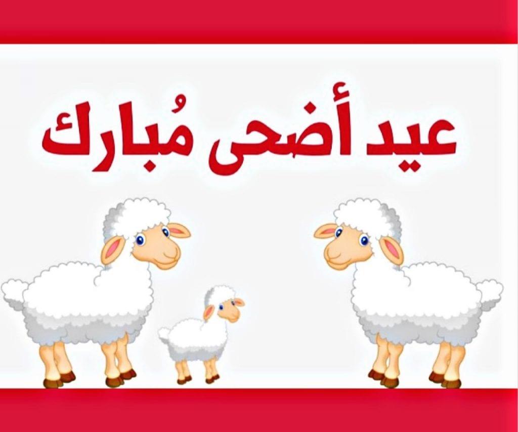 موعد أجازة عيد الأضحى 1442-2021 في القطاع الحكومي والخاص