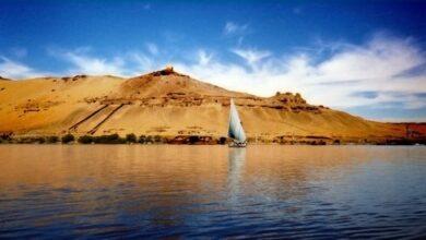Photo of الصيادين يستعدون لموسم صيد استاكوزا النيل الذهب الأحمر 200جنية الكيلو