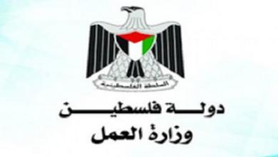 Photo of موقع وزارة العمل الفلسطينية mol.pna.ps برقم الهوية لصرف 700 شيكل مساعدات